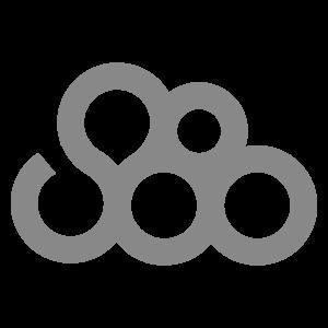 Standard∞Eight_Logo